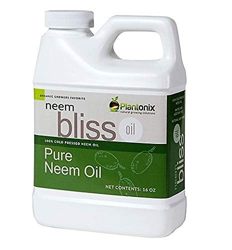 Organic Neem Bliss 100% Pure Cold Pressed Neem Seed Oil - (16 oz) High...