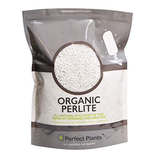 Organic Perlite by Perfect Plants — Add to Soil for Indoor & Outdoor...