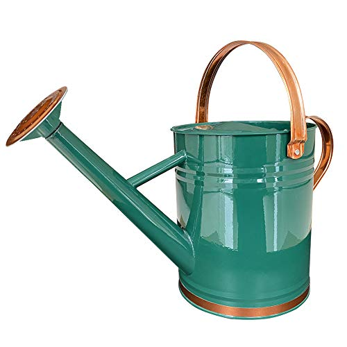 Galvanized Steel Watering Can Metal Watering Can for Outdoor Plants with...