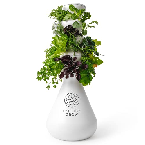 Lettuce Grow 24-Plant Hydroponic System - Hydroponic Growing System,...