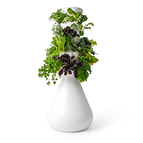 Lettuce Grow 24-Plant Hydroponic Growing System Kit, Outdoor Indoor...