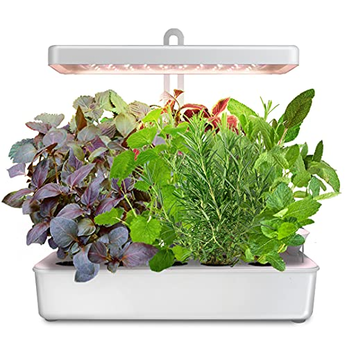 LED Hydroponic Grow System Kit Indoor Herb Garden, 10-Pod GrowLED...