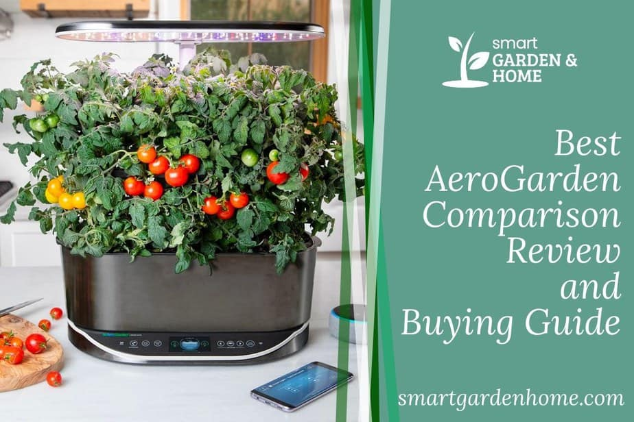 Best AeroGarden Comparison Review and Buying Guide