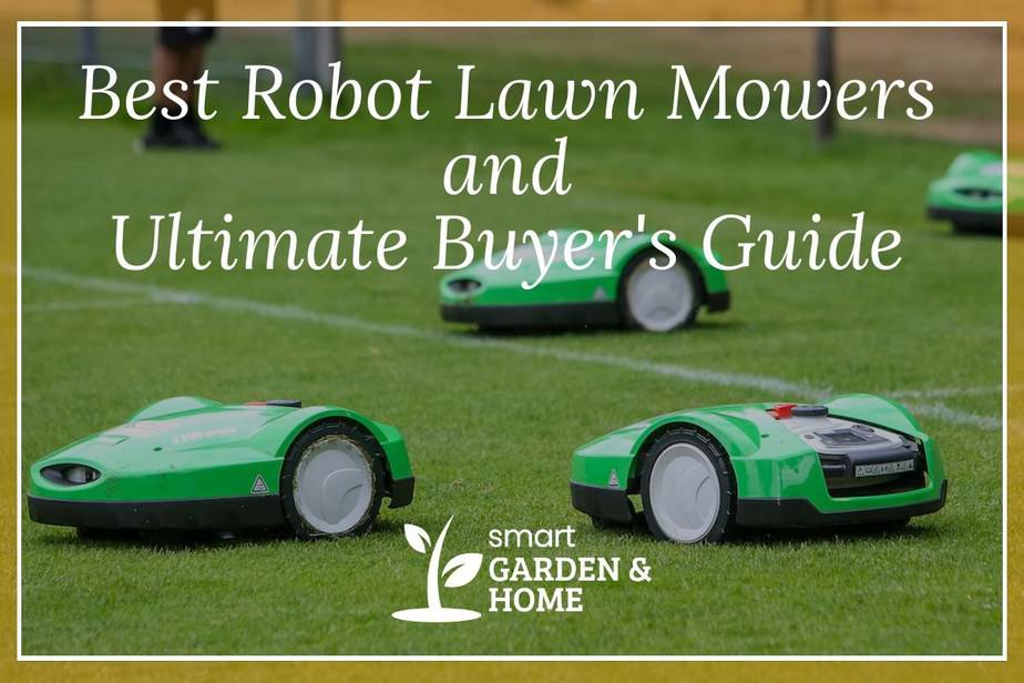 Best Robot Lawn Mowers and the Ultimate buyer's guide