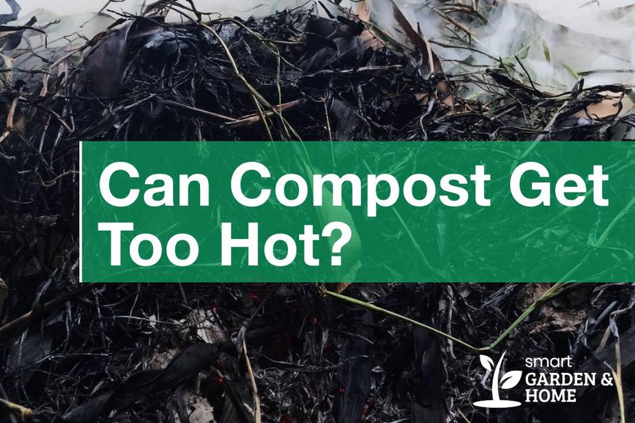 Can Compost Get Too Hot?