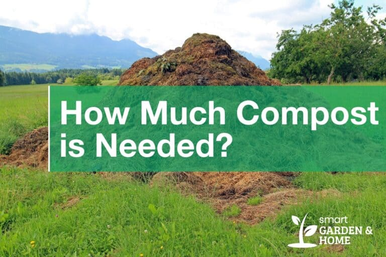 How Much Compost is Needed?