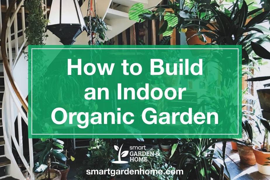 How to Build an Indoor Organic Garden