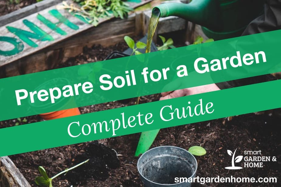 How to Prepare Soil For a Garden and Healthy Plant Growth