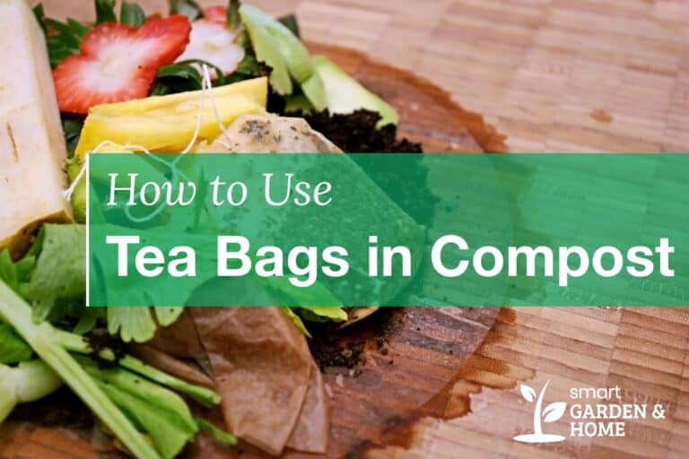 How to Use Tea Bags in Compost