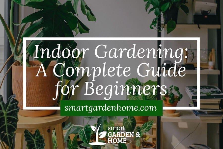 Indoor Gardening for Beginners Complete Guide - Smart Garden and Home