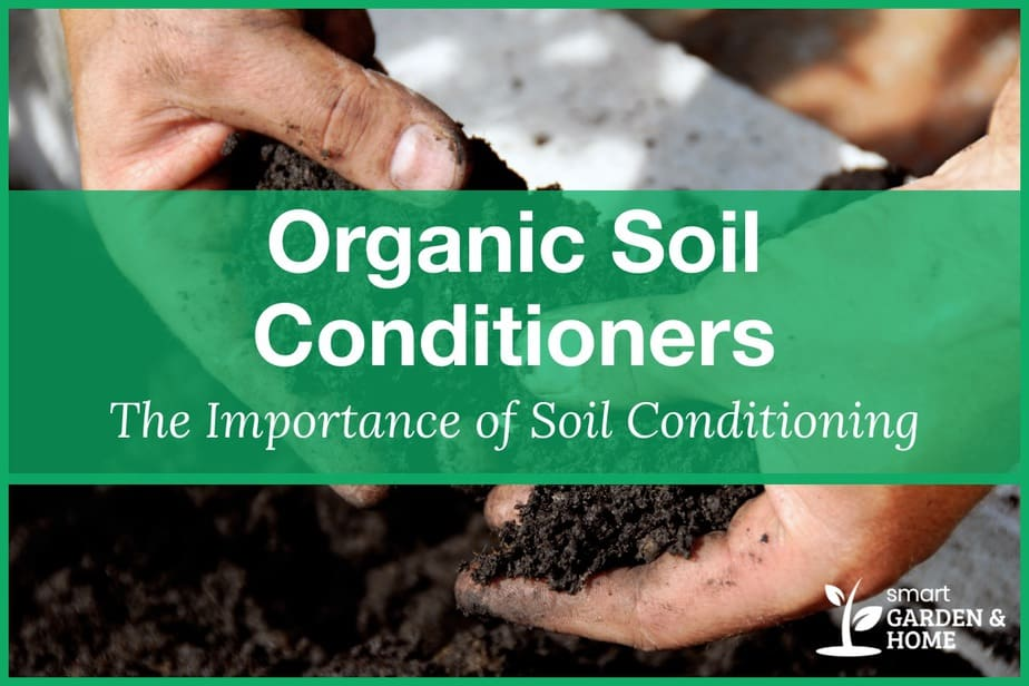 What are Organic Soil Conditioners and the Importance of Soil Conditioning