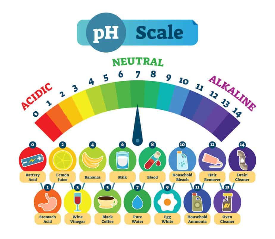 pH Levels Scale from Acidic to Alkaline