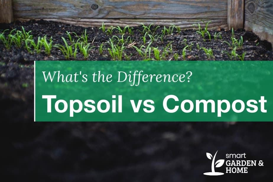 Topsoil vs Compost: What is Better? What are the Differences?