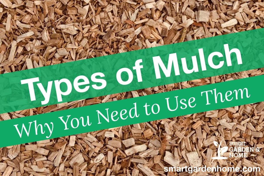 Types of Mulch for Gardens