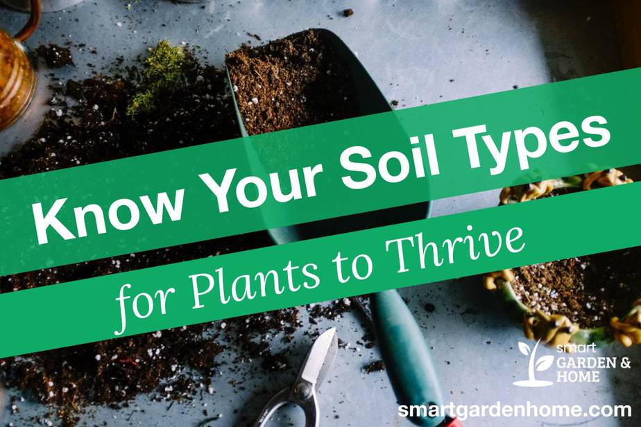 Types of Soil for Plants to Thrive
