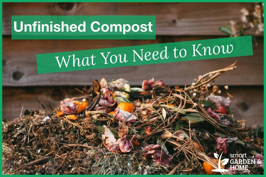 Unfinished Compost What You Need to Know