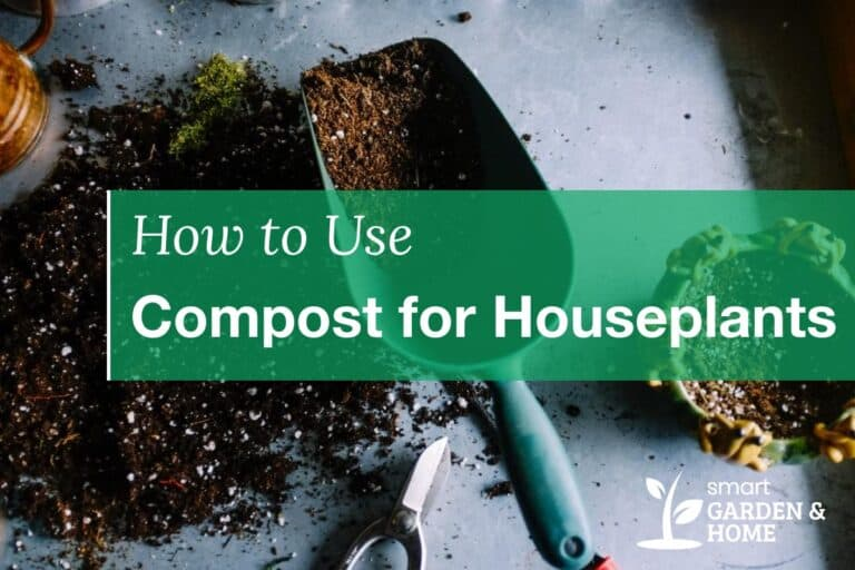 How to Use Compost in Containers for Houseplants